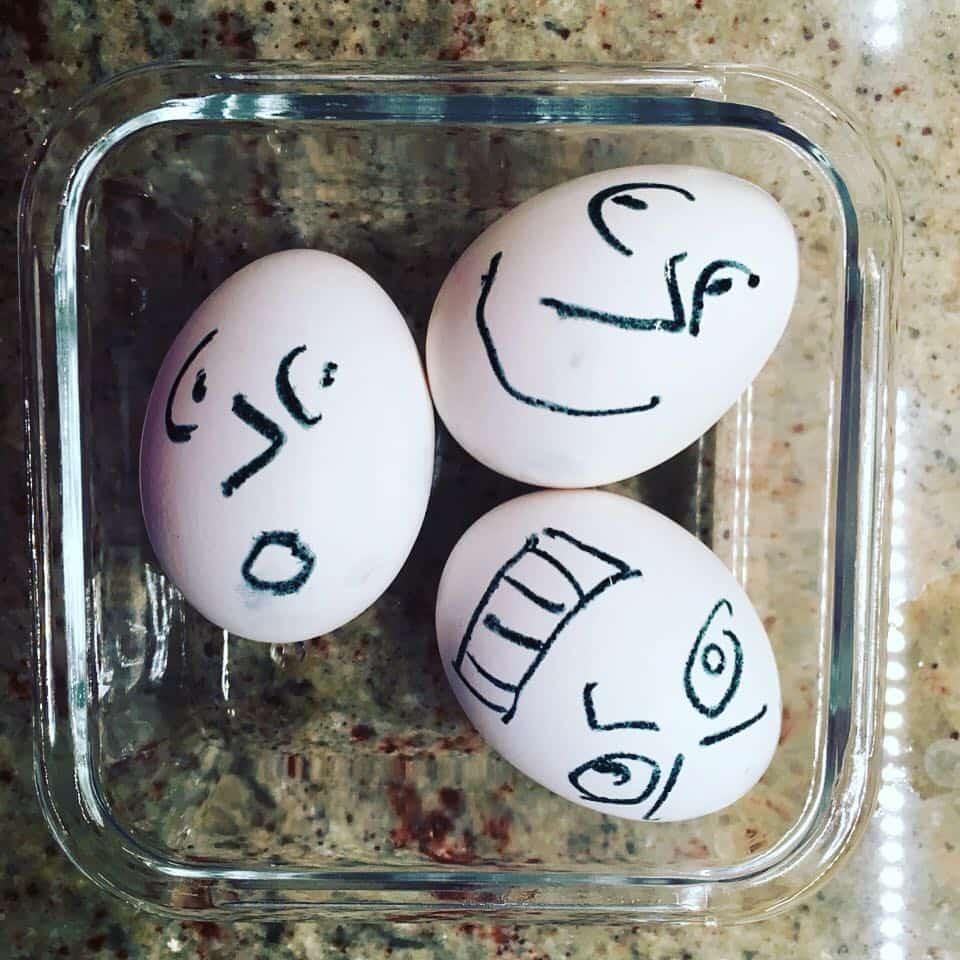 eggs artchick